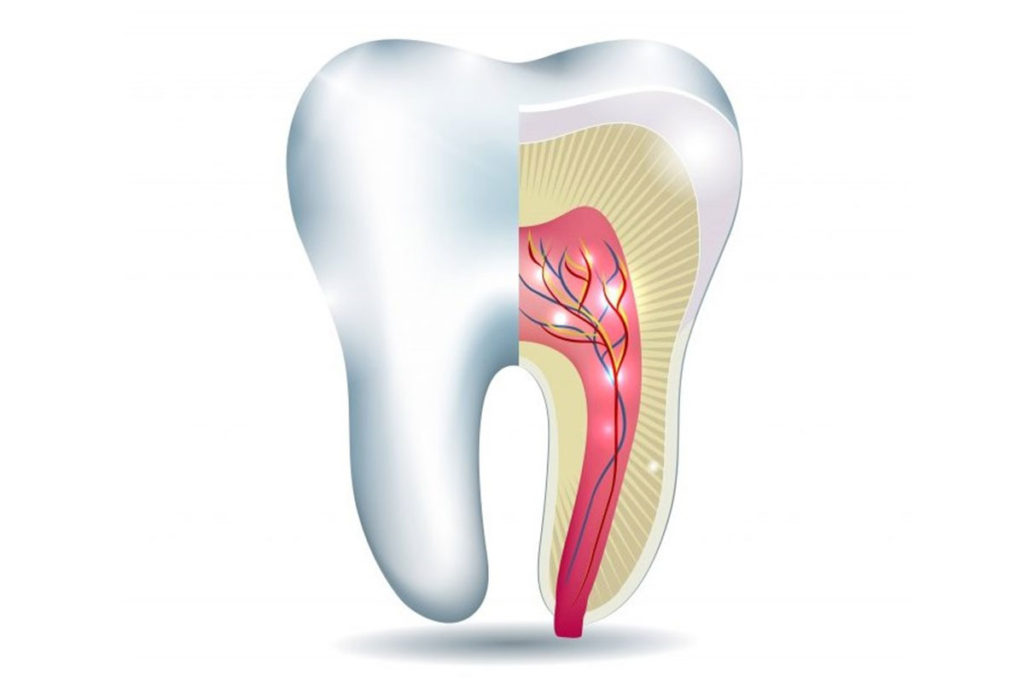 facts about root canal treatment
